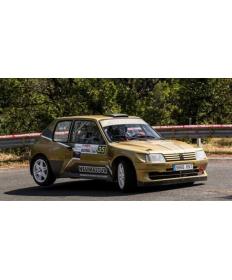 Kit maxi Peugeot 205 EVO